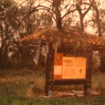 De Soto Trail Kiosk - Gothic